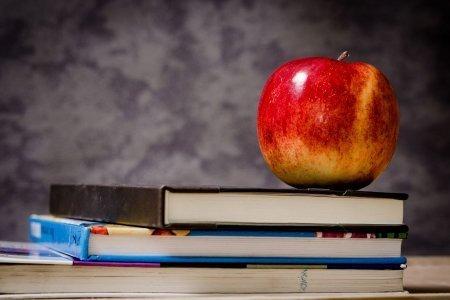 Online tutoring jobs no experience